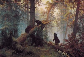 Morning in the Pine Tree Forest 1889 | Ivan Shishkin | oil painting
