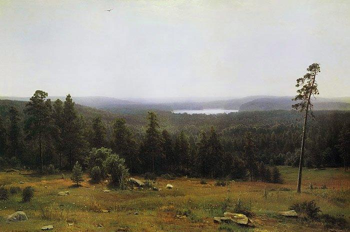 The Forest Horizons 1884   Ivan Shishkin   oil painting