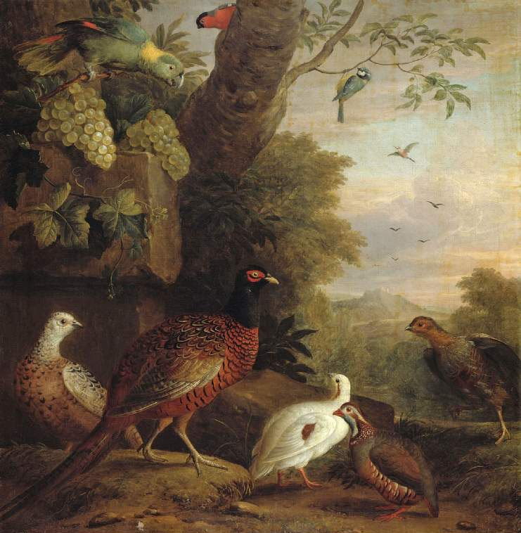Birds in a landscape | Jakob WBogdany | oil painting