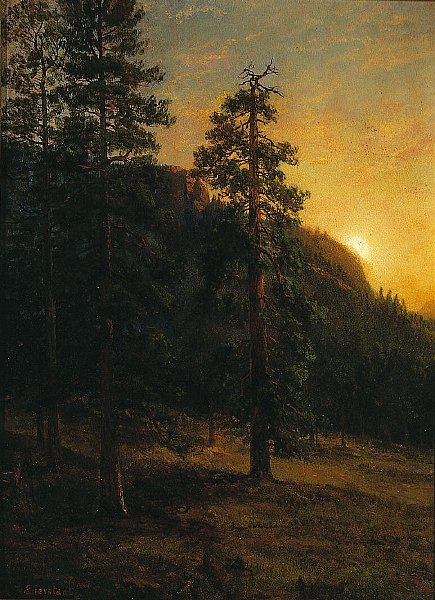 California Redwoods | Albert Bierstadt | oil painting