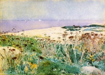 Islea of Shoals2 | Frederick Childe Hassam | oil painting