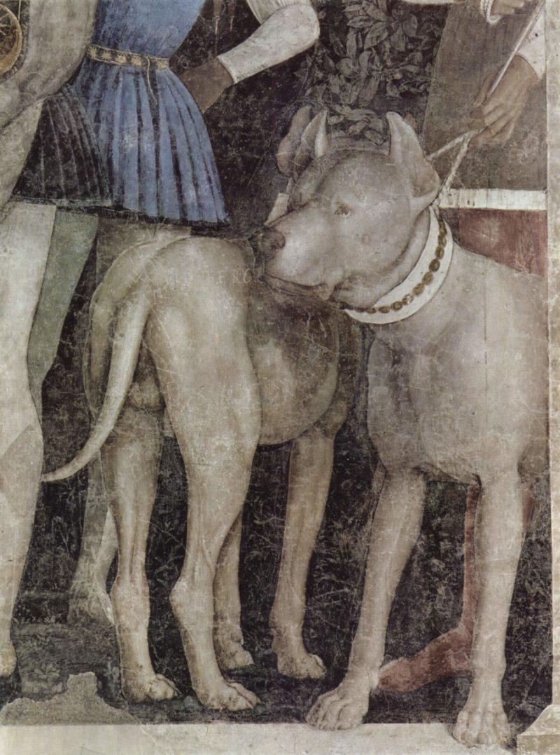 Freskenzyklus in der Camera degli Sposi im Palazzo Duccale in Mantua