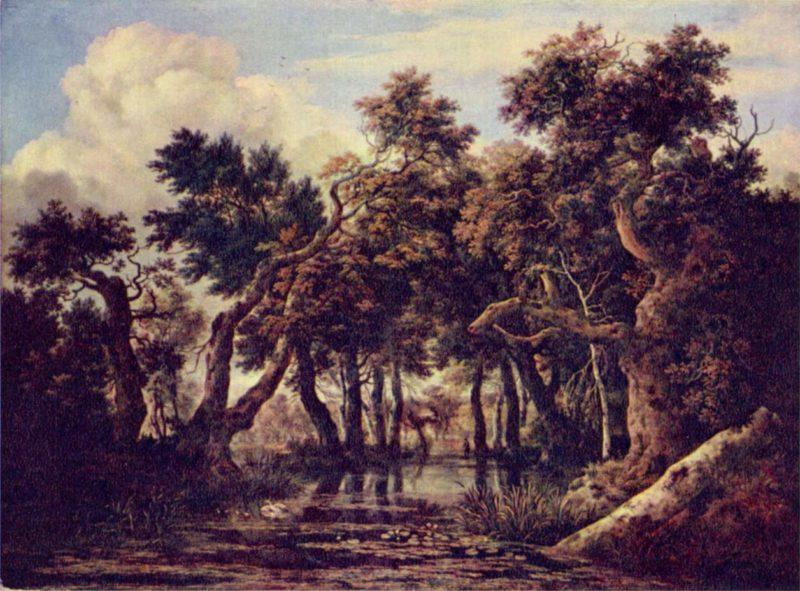 Sumpf | Ruisdael