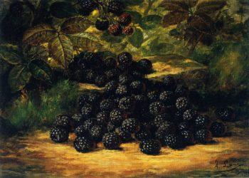 Blackberries | August Laux | oil painting