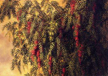 Pepper Trees | Ellen Burpee Farr | oil painting