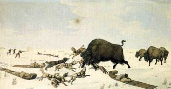 Buffalo Hunt | Peter Rindisbacher | oil painting