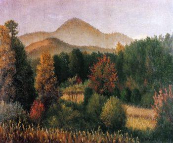 Wooded Mountain Scene in North Carolina   William Aiken Walker   oil painting