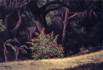 Woodland Scene with Red Flowered Bush | William Aiken Walker | oil painting