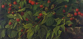 Raspberry Bush | Levi Wells Prentice | oil painting