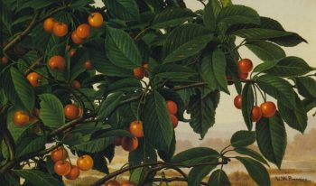 Cherries on a Bough | Levi Wells Prentice | oil painting