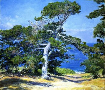 A Carmel Pine | Guy Orlando Rose | oil painting
