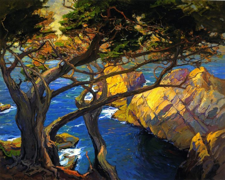 Cleft Born Trees Monterey | Franz Bischoff | oil painting