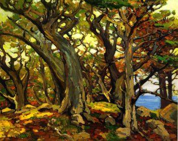 Monterey Cypress   Franz Bischoff   oil painting
