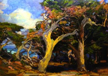 Windswept Twisted Cypress | Franz Bischoff | oil painting