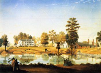 Olivier Plantation | Marie Adrien Persac | oil painting