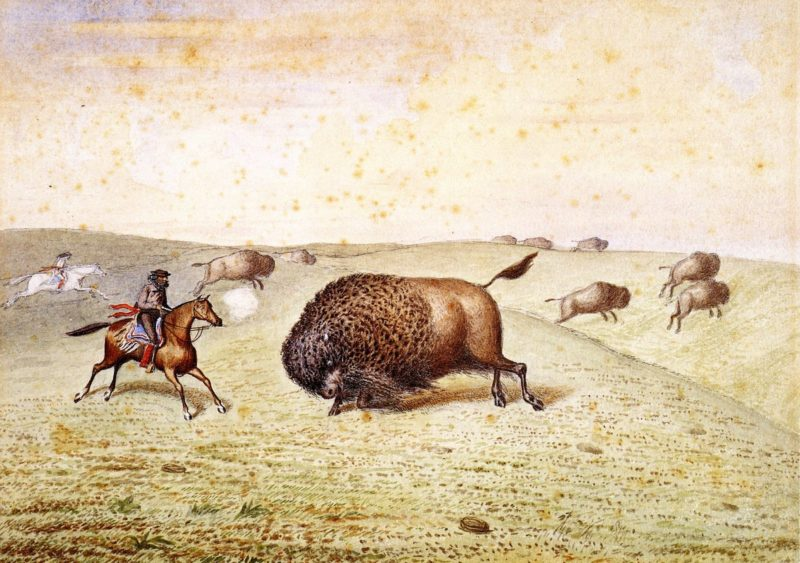 William Hind Meeting a Buffalo | William George Richardson Hind | oil painting