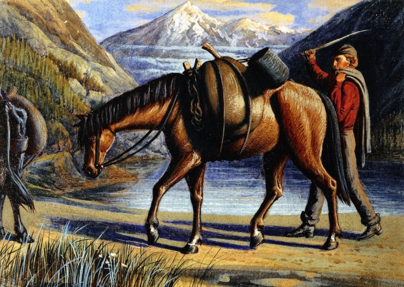Pack Horse Athabaska River Rocky Mountains   William George Richardson Hind   oil painting