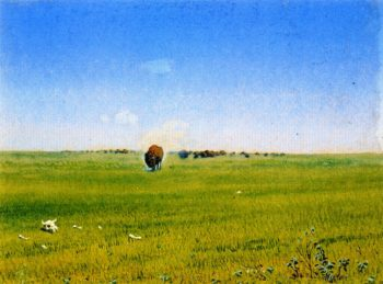 North Western Prairie with Buffalo No 7 | William George Richardson Hind | oil painting
