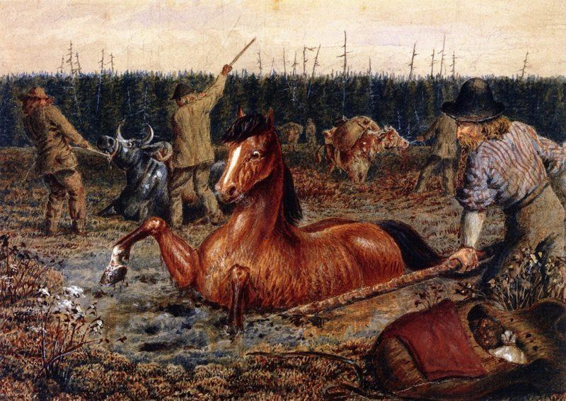 Crossing Swamps near Head Water North Saskatchewan   William George Richardson Hind   oil painting