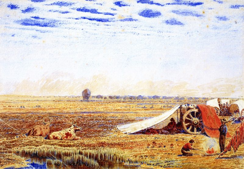 Buffalo Magnified by Mirage | William George Richardson Hind | oil painting