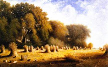 Cazenovia Corn Field | Gilbert Munger | oil painting