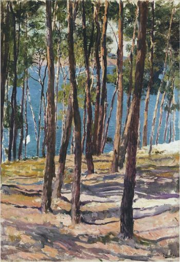 Pine Trees | Joaquin Sorolla y Bastida | oil painting