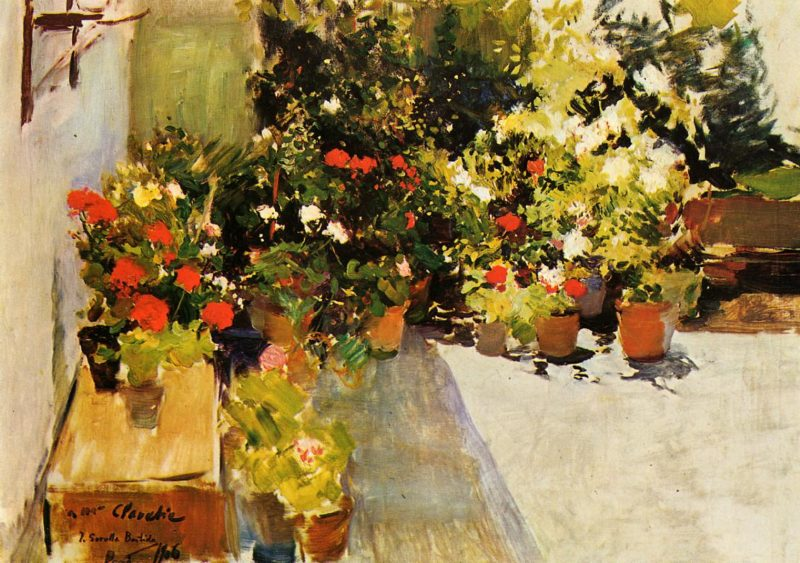 A Rooftop with Flowers   Joaquin Sorolla y Bastida   oil painting