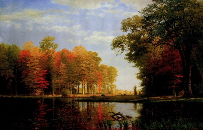 Autumn Woods | Albert Bierstadt | oil painting
