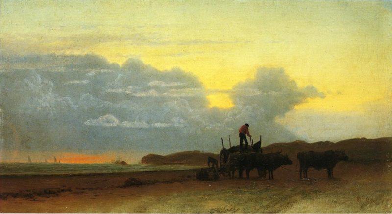 Coastal View Newport | Albert Bierstadt | oil painting