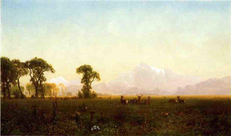 Deer Grazing Grand Tetons Wyoming | Albert Bierstadt | oil painting