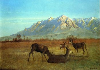 Deer in a Mountain Home | Albert Bierstadt | oil painting