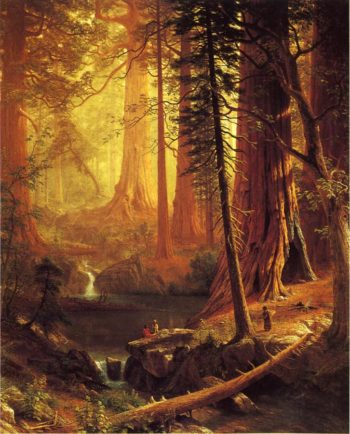 Giant Redwood Trees of California | Albert Bierstadt | oil painting