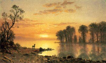 Sunset Deer and River | Albert Bierstadt | oil painting