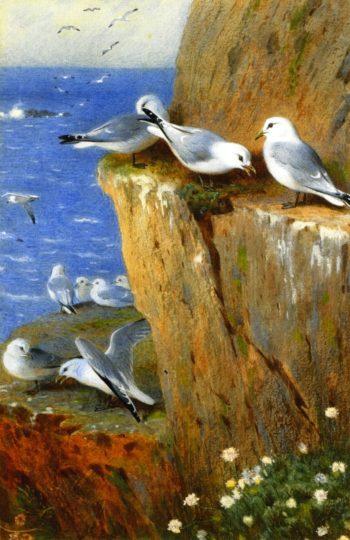 Seagulls | Archibald Thornburn | oil painting