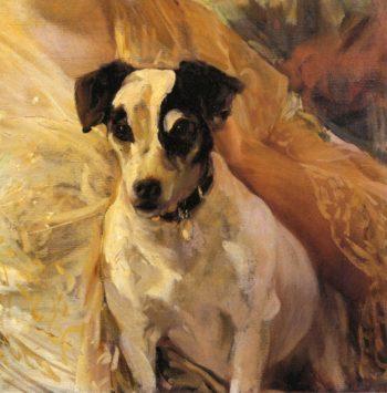 Portrait of a Jack Russell | Joaquin Sorolla y Bastida | oil painting