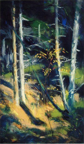Maine Landscape | Robert Henri | oil painting