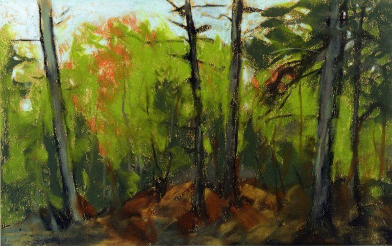 Woodland Scene Monhegan Maine | Robert Henri | oil painting