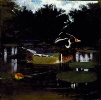 Male Wood Duck in a Forest Pool | Abbott Handerson Thayer | oil painting