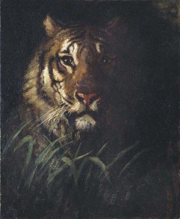 Tiger's Head | Abbott Handerson Thayer | oil painting