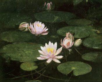 Waterlilies | Abbott Handerson Thayer | oil painting