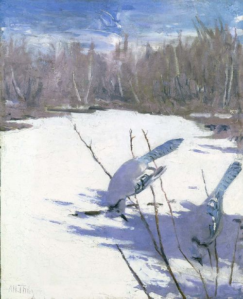 Blue Jays in Winter   Abbott Handerson Thayer   oil painting