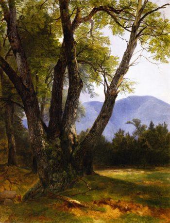 Shandaken Ulster County | Asher B Durand | oil painting