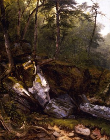 Study from Nature Rocks and Trees in the Catskills New York | Asher B Durand | oil painting