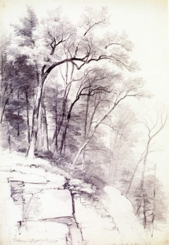 Study of Trees and Rocks Kaaterskill Clove New York | Asher B Durand | oil painting