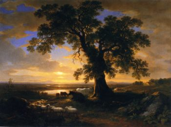 The Solitary Oak | Asher B Durand | oil painting