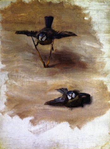 Studies of a Dead Bird | John Singer Sargent | oil painting