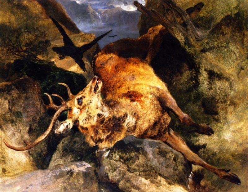 A Deer Fallen from a Precipice | Sir Edwin Landseer | oil painting