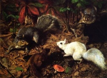 Squirrels | William Holbrook Beard | oil painting