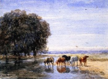 Horses Drinking | David Cox | oil painting