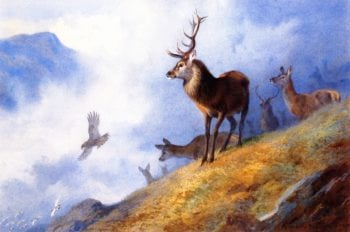 Red Deer Watching a Golden Eagle Hunt Ptarmigan | Archibald Thorburn | oil painting